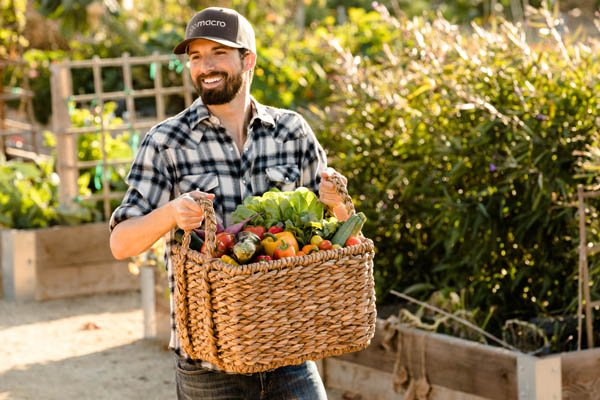 GoMacro Plants And Vegetables