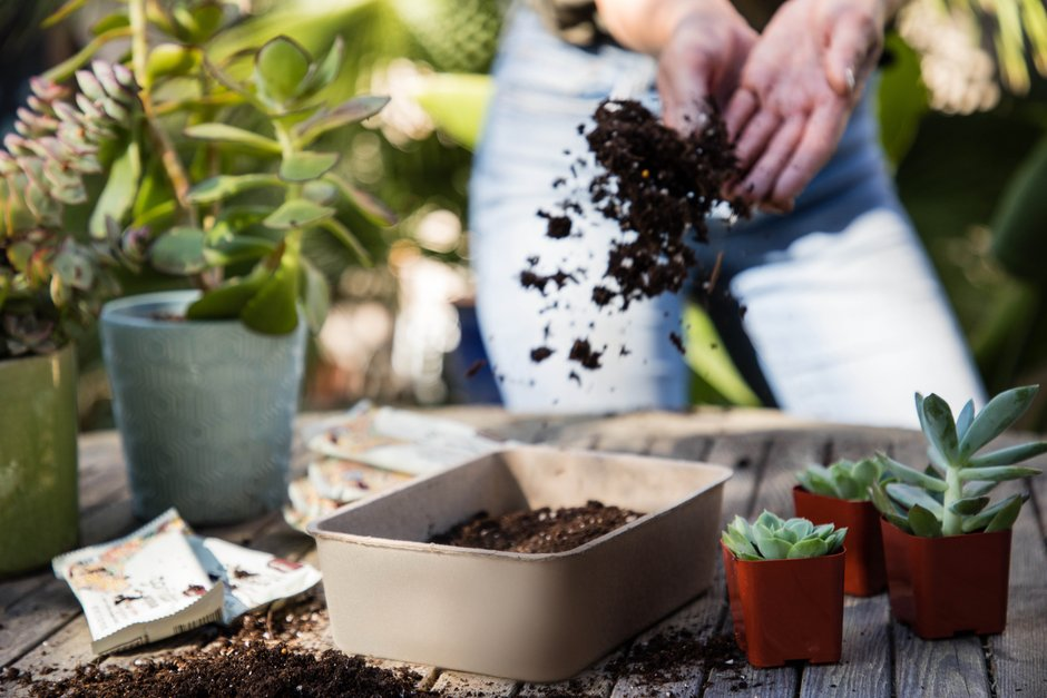 Step 1: How to Make an Upcycled Planter Using GoMacro Trays