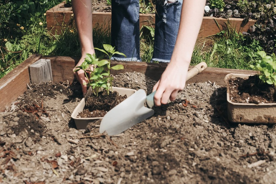 Step 6: How to Make an Upcycled Planter Using GoMacro Trays